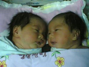 kembar